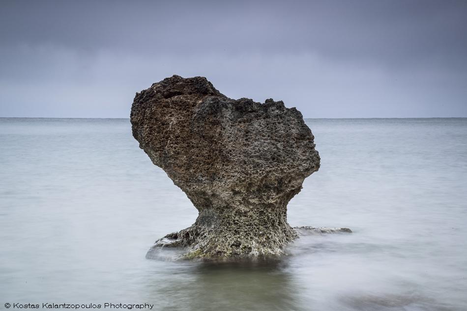sea-sculptures-3