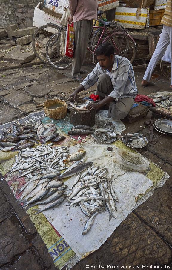 fish-market-10