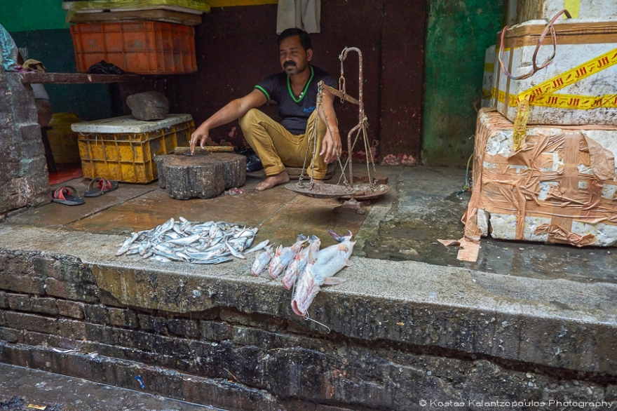 fish-market-13