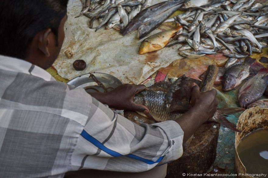 fish-market-4